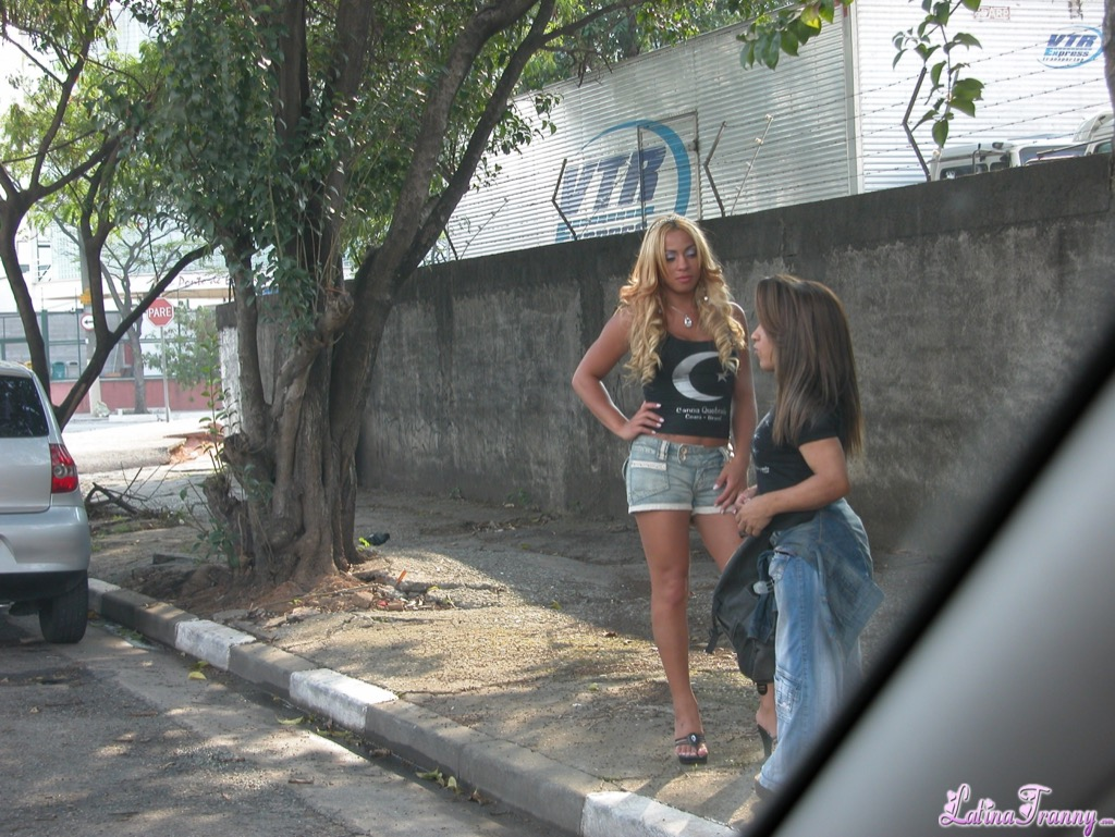 Hot ladyboy with a midget friend gets picked up for a cock
